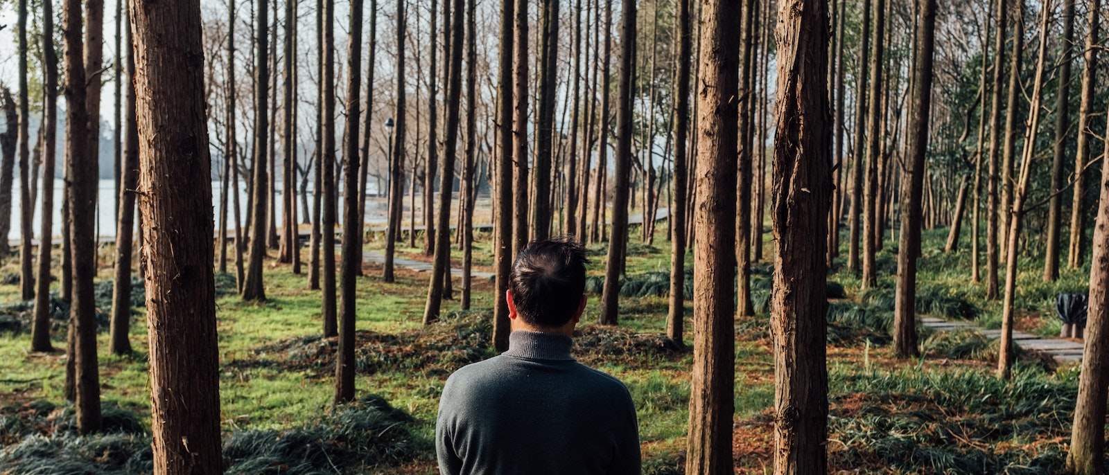 Man looking in to forest
